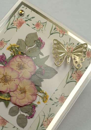 Butterfly and Roses Card