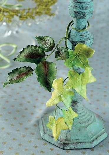 Rose and Ivy Leaves